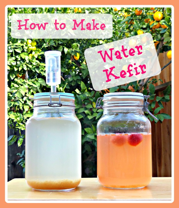How to Make Water Kefir A Healthy Probiotic Beverage!