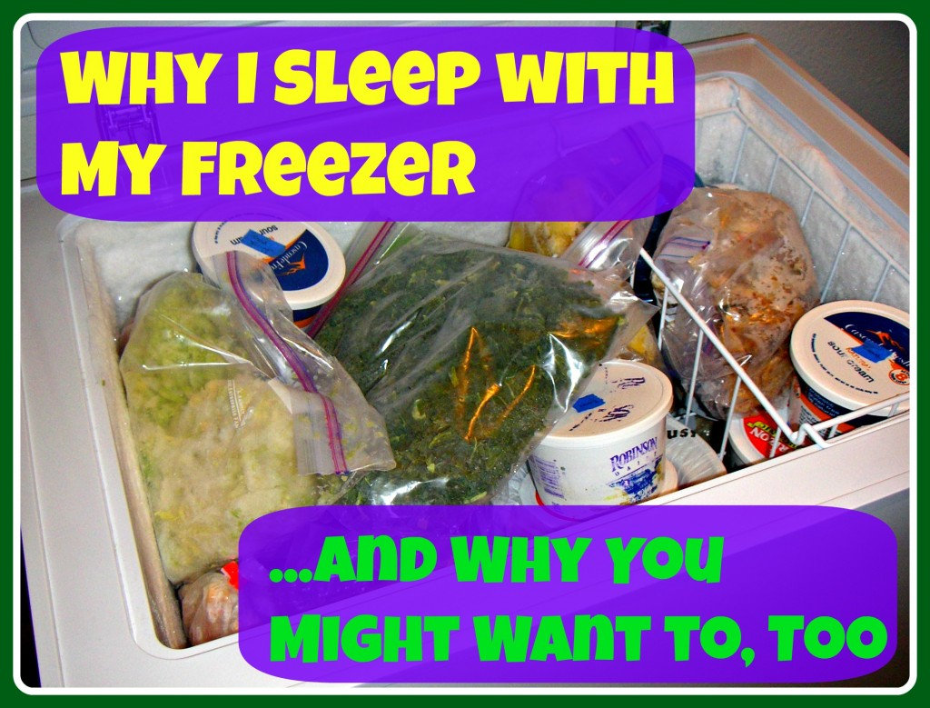 Why I Sleep with My Freezer