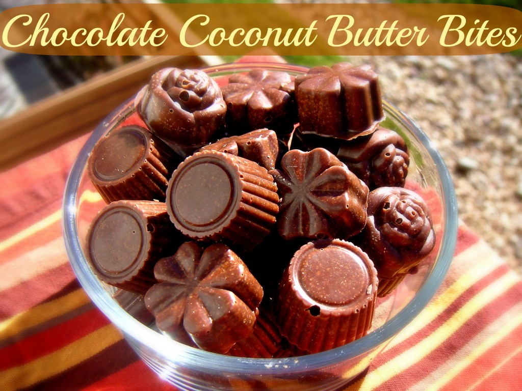 Chocolate Coconut Butter Bites: Eat Your Coconut Butter on the Go ...