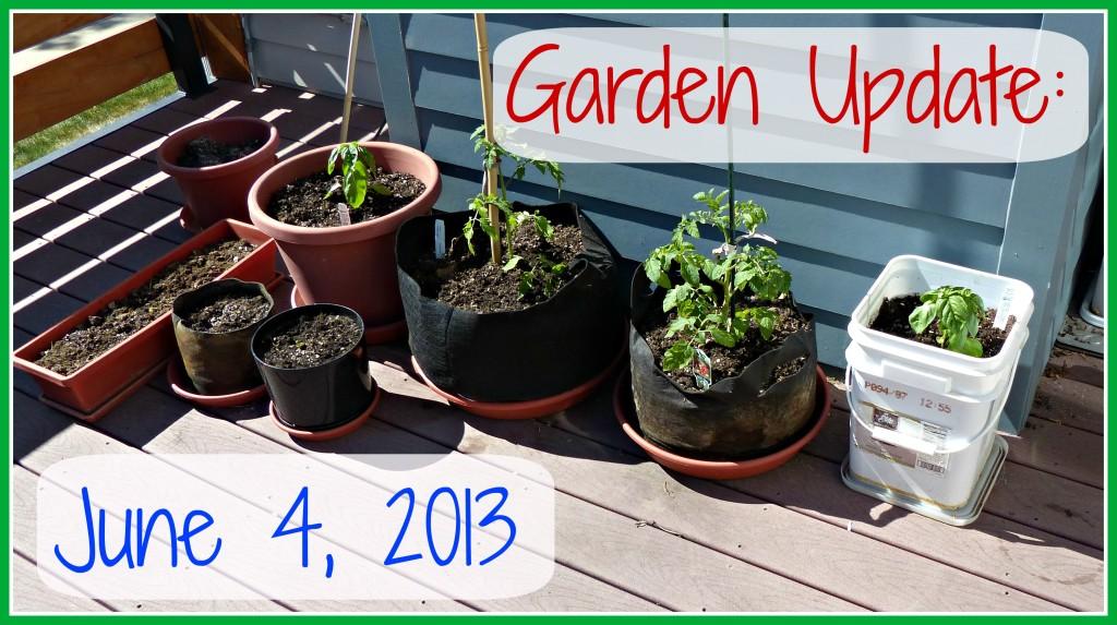 Garden Update June 4 2013