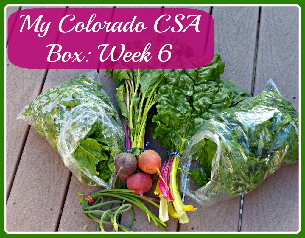 Colorado CSA Box Week 6