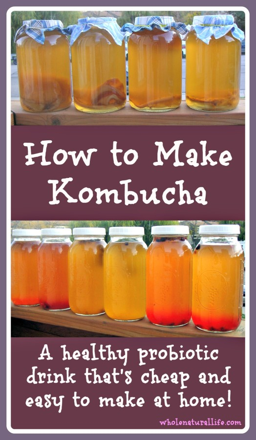 How to Make Kombucha: A healthy probiotic beverage that's cheap and easy to make at home!