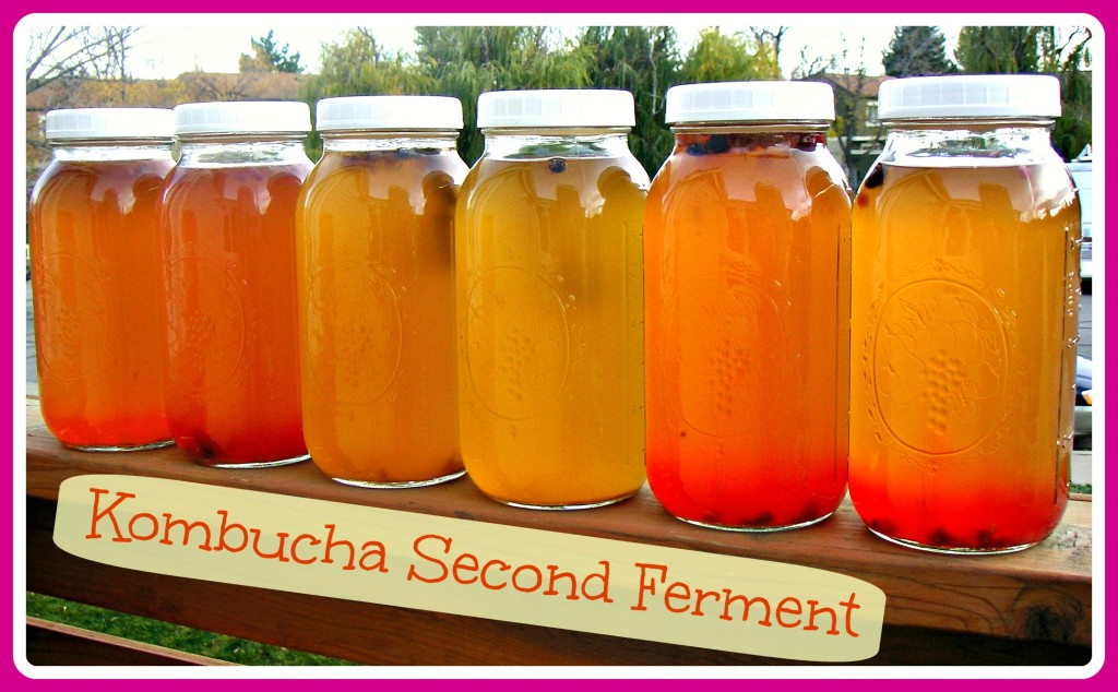 Kombucha Second Ferment