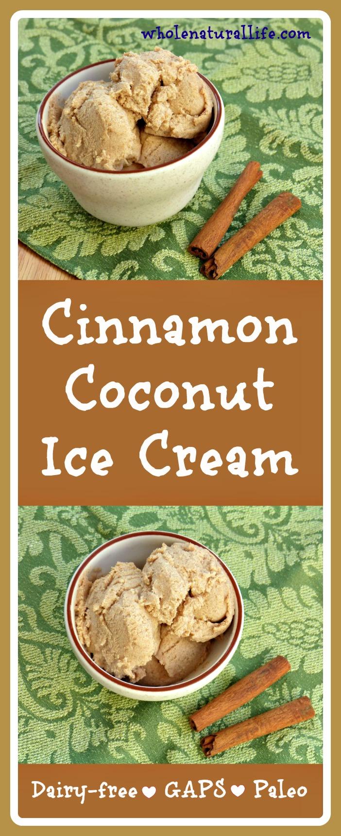 Cinnamon Coconut Ice Cream