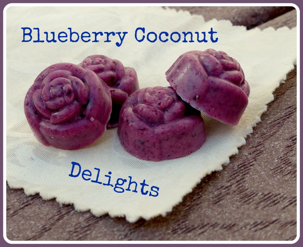 Blueberry Coconut Delights