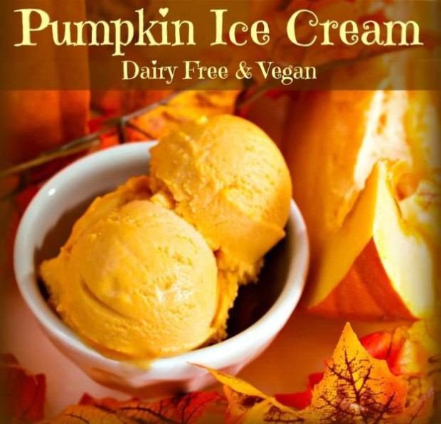 Coconut Pumpkin Ice Cream from The Coconut Mama