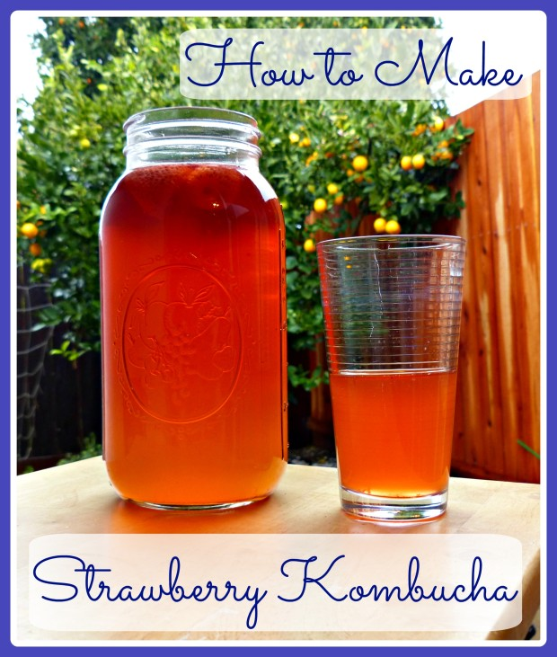 Strawberry Kombucha: A Delicious Probiotic Beverage!