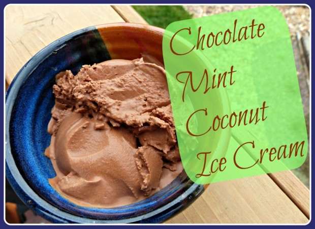 Chocolate mint coconut ice cream