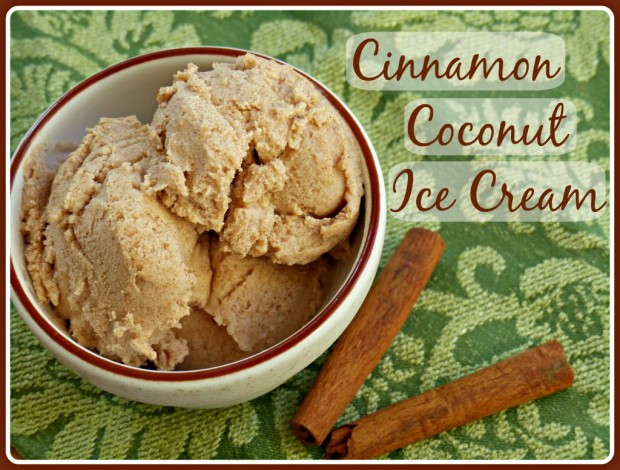 Cinnamon Coconut Ice Cream