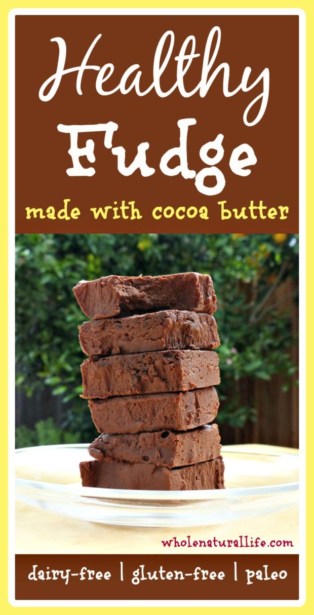 You need to try this healthy fudge recipe! It's dairy-free, honey-sweetened, and made with cocoa butter.  Plus it's super simple to make!