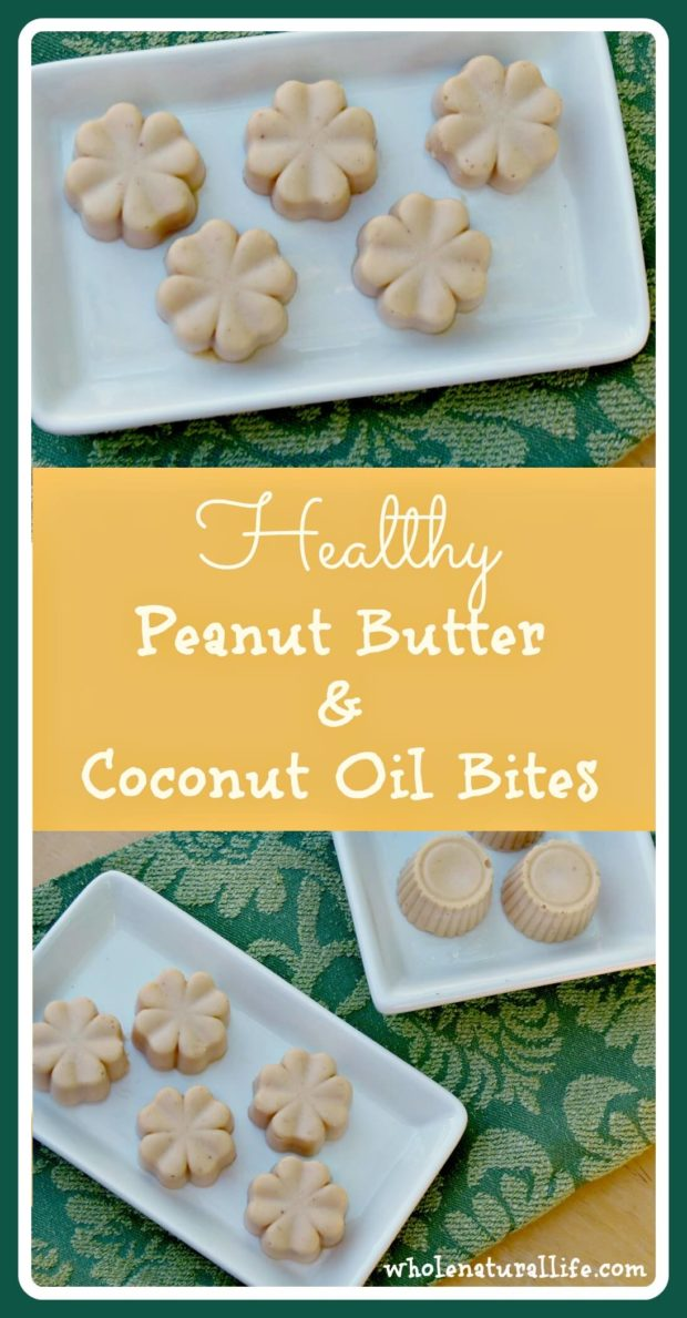 These peanut butter and coconut oil bites taste like candy, but they're actually a healthy way to add more coconut oil to your diet! Coconut oil is combined with a small amount of peanut butter and lightly sweetened with honey to make this delicious healthy fat snack. Click here to get the easy recipe!